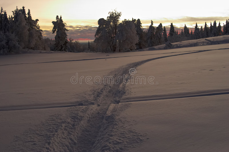 Download Across the snow field stock photo. Image of sadness, solitude - 471102