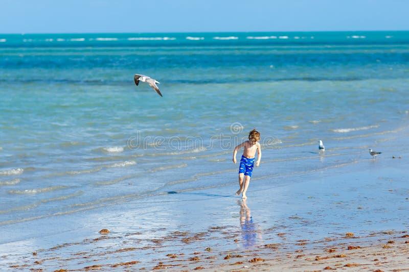 Actief weinig jong geitjejongen die pret op het strand van Miami, Zeer belangrijke Biscayne heeft Gelukkig leuk kind die dichtbij stock afbeelding