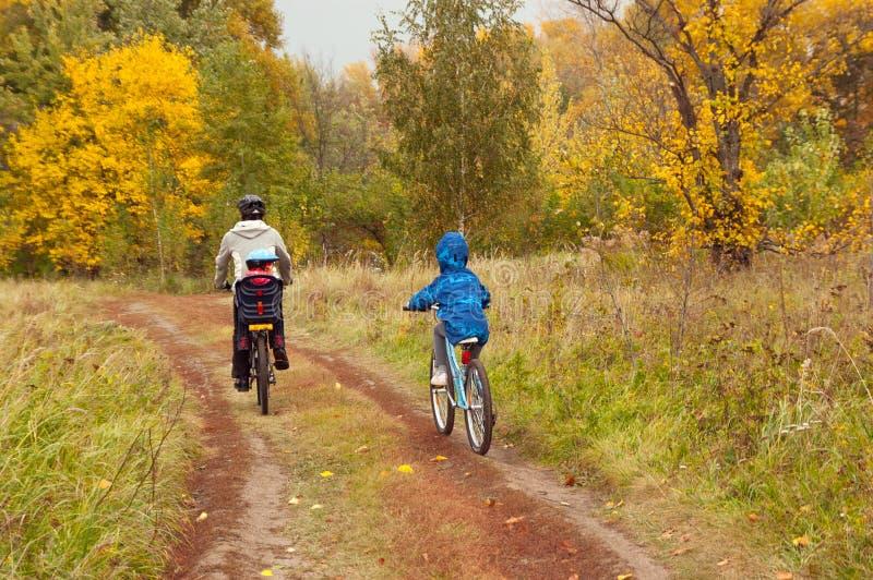 Actieve familie op fietsen, die de gouden herfst in park in openlucht cirkelen stock afbeelding