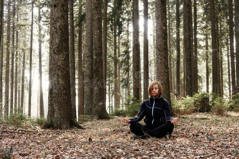Actieve levensstijl - gezonde levensstijl Het ontspannen in de aard stock foto