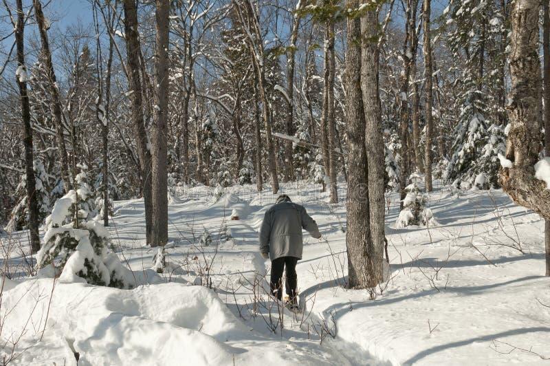Actieve oudste met sneeuwschoenen stock foto