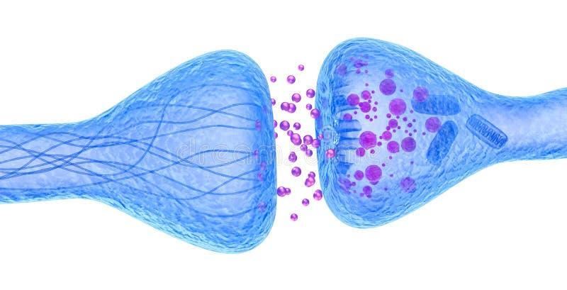 Actieve receptor macrodiemening op wit wordt geïsoleerd royalty-vrije illustratie