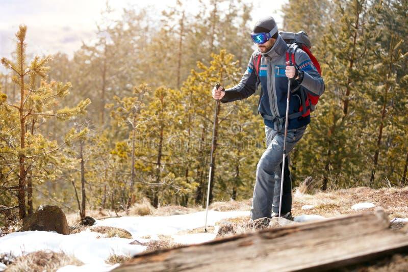 Download Actieve Wandelaar In Bosbergen Stock Foto - Afbeelding bestaande uit rugzak, koude: 107706488