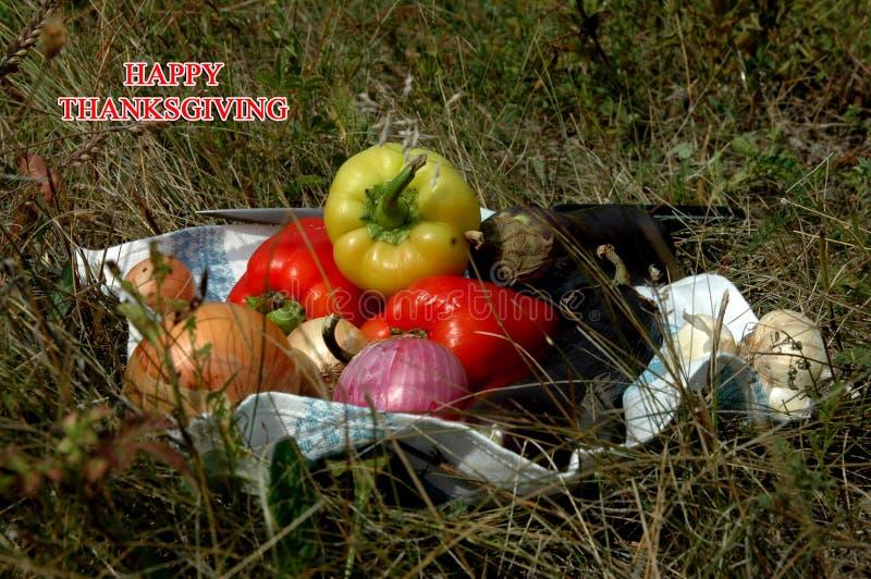 Action de grâces heureuse légumes pour le thanksgiving photos stock