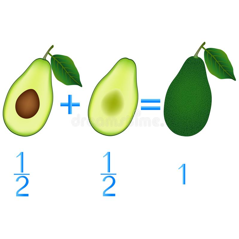 Action relationship of addition halves, examples with avocado. Educational game for children. Action relationship of addition halves, examples with avocado royalty free illustration