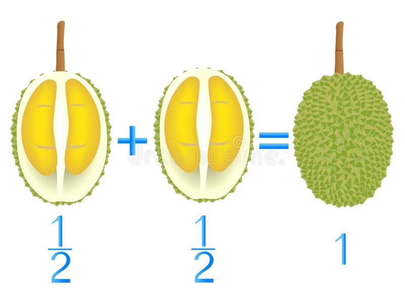 Action relationship of addition halves, examples with durian. Educational game for children. Action relationship of addition halves, examples with durian stock illustration