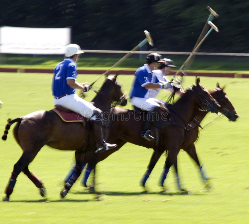 Action shot of a polo match