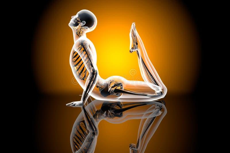 Actitud de la yoga - rey Cobra fotografía de archivo libre de regalías