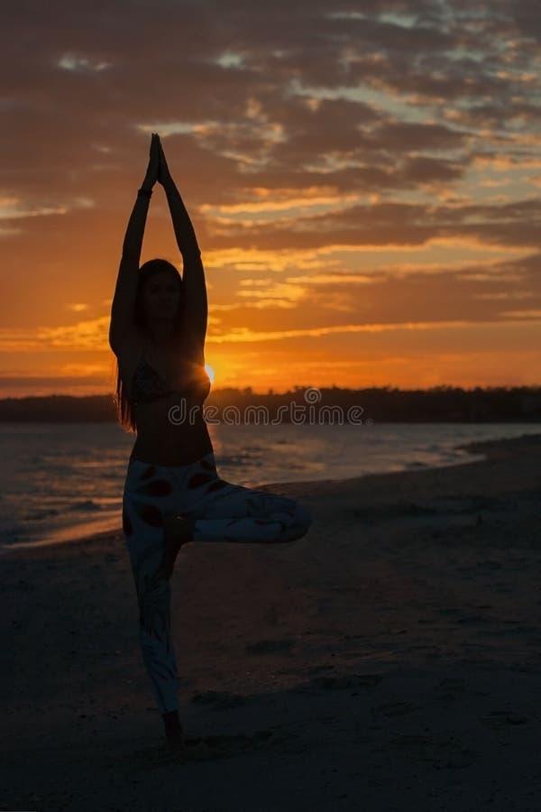 Actitud practicante del árbol de la yoga de la mujer joven en la puesta del sol, salida del sol Salud del zen y concepto del bien imágenes de archivo libres de regalías