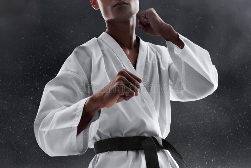 Actitud que lucha del combatiente del arte marcial fotografía de archivo