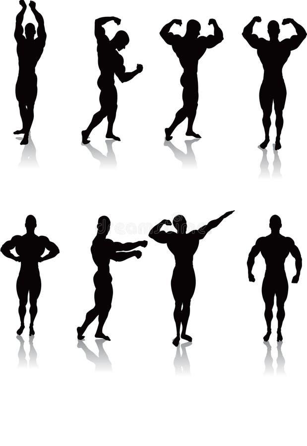 Actitudes clásicas del Bodybuilding ilustración del vector