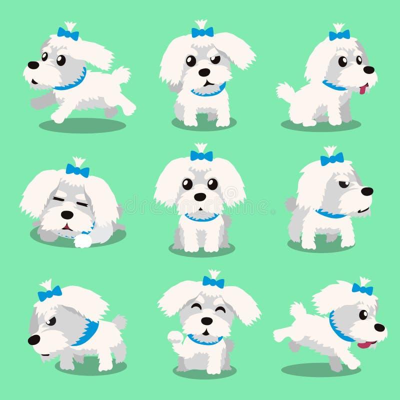 Actitudes del perro maltés del personaje de dibujos animados stock de ilustración