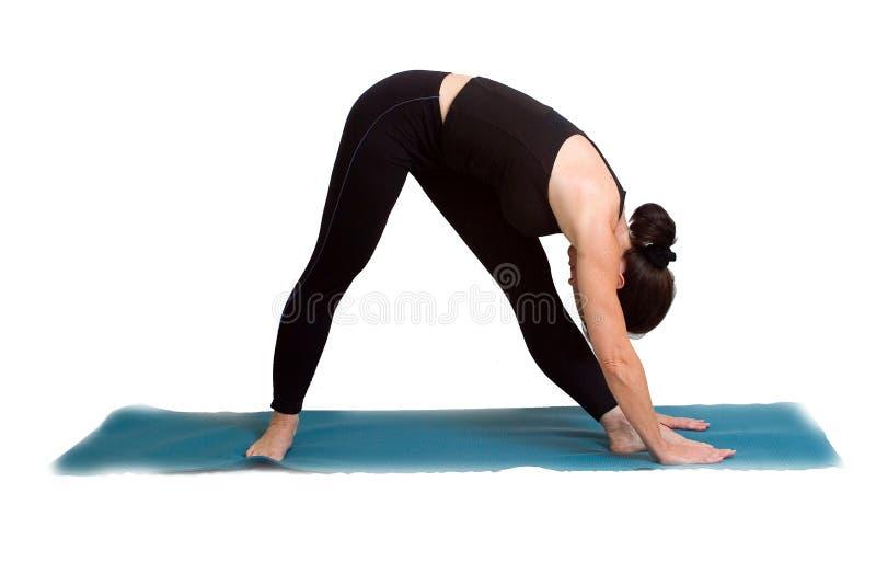 Download Actitudes Y Ejercicio De La Yoga Imagen de archivo - Imagen de carrocería, belleza: 1278589