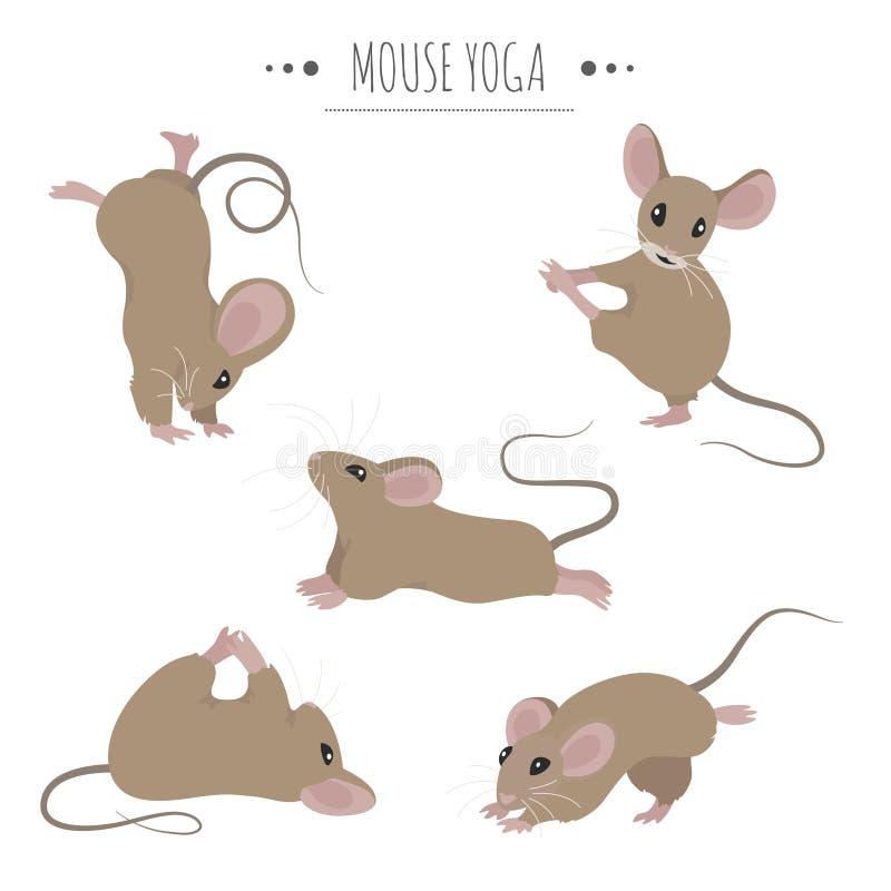 Actitudes y ejercicios de la yoga del ratón Sistema lindo del clipart de la historieta libre illustration