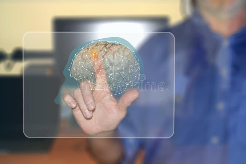 Activación de una porción del cerebro en una pantalla virtual contra un fondo borroso imagen de archivo