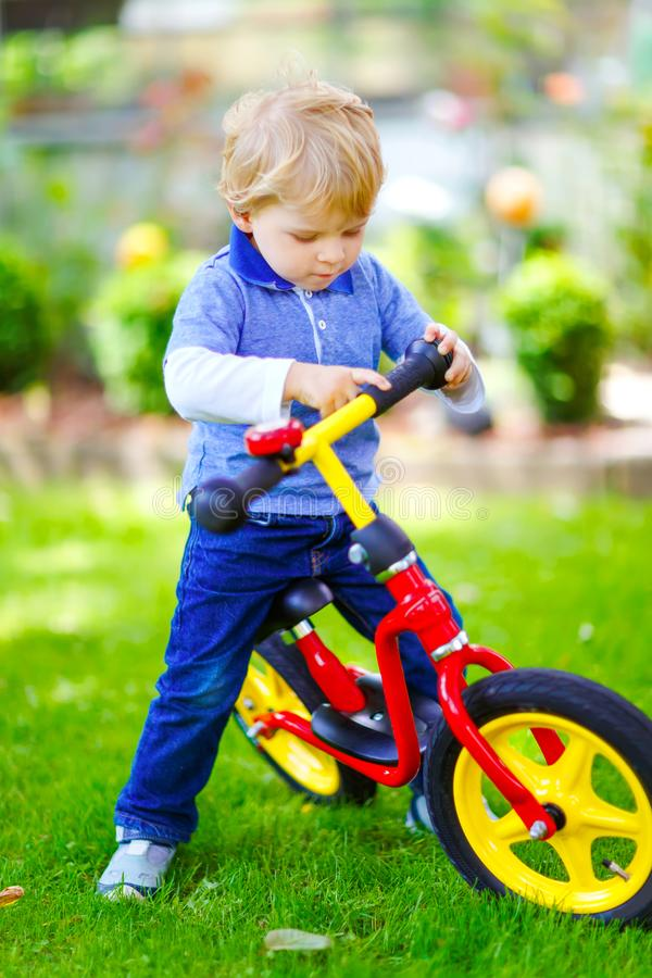 Active blond kid boy in colorful clothes driving balance and learner`s bike or bicycle in domestic garden. Toddler child stock photo