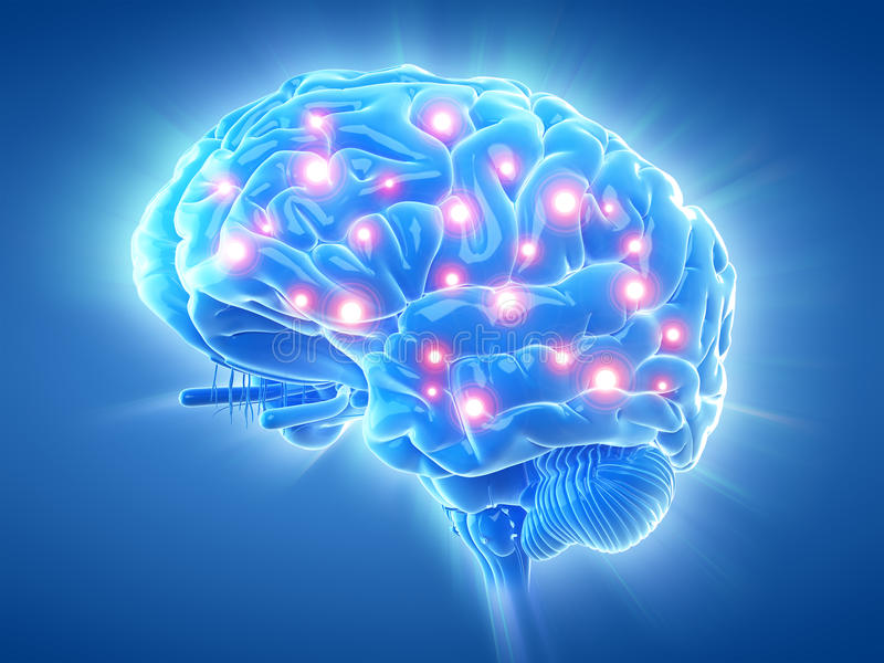An active brain royalty free illustration