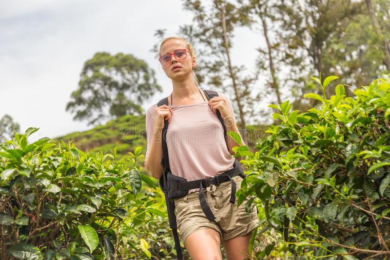 Active caucasian blonde woman enjoing fresh air and pristine nature while tracking among tea plantaitons near Ella, Sri stock photos