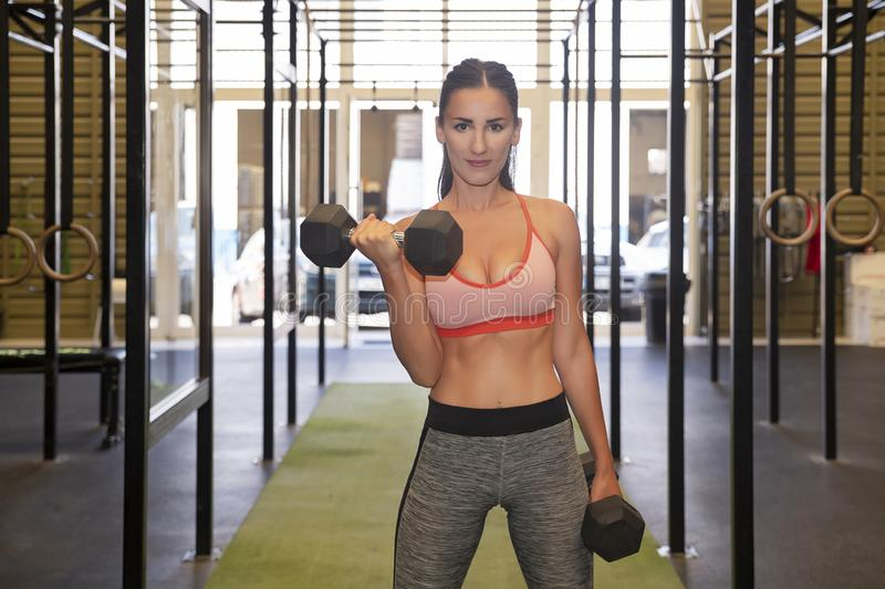 Active Caucasian female lifting heavy dumbbells, working out her arms at the gym stock images