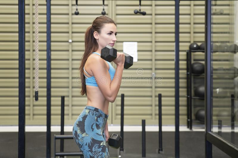 Active Caucasian female lifting heavy dumbbells, working out her arms stock image