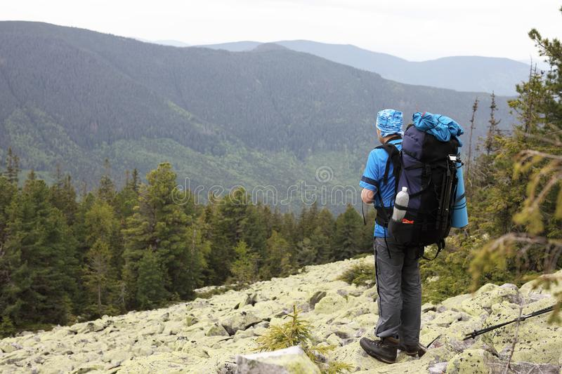 Active Healthy Man Hiking In Beautiful Forest Stock Photo ...