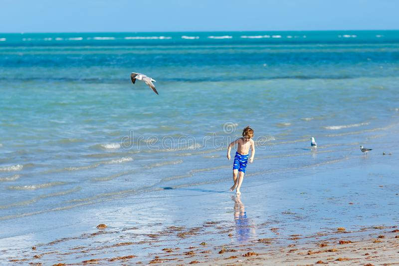 Active little kid boy having fun on Miami beach, Key Biscayne. Happy cute child running near ocean on warm sunny day. Healthy kid in swim trousers hunting stock image