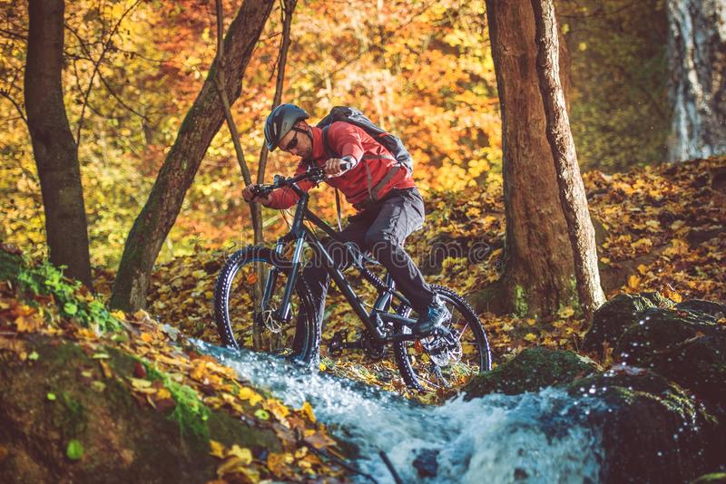 Active Mountain Biker stock photos