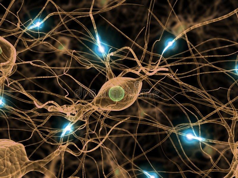 Active nerve cells vector illustration