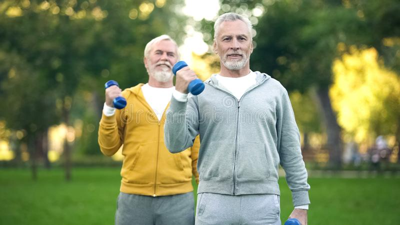 Active retired friends lifting dumbbells, fitness training park, healthy aging royalty free stock image