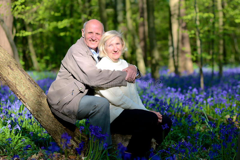 Active senior couple hiking in the forest stock image