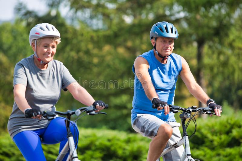 Active senior couple riding bicycle in park royalty free stock image