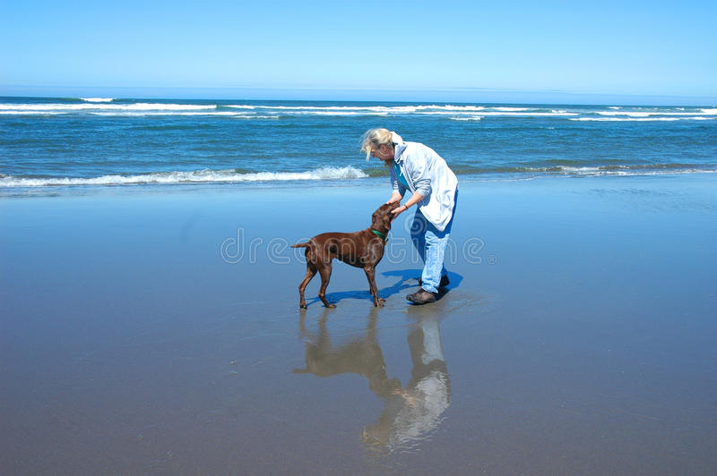 Active senior woman with Dog royalty free stock images