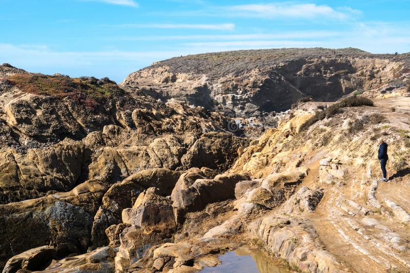 Active senior woman stands on the slippery rocks of Point Lobos State Reserve in California, admiring the scenery royalty free stock photos