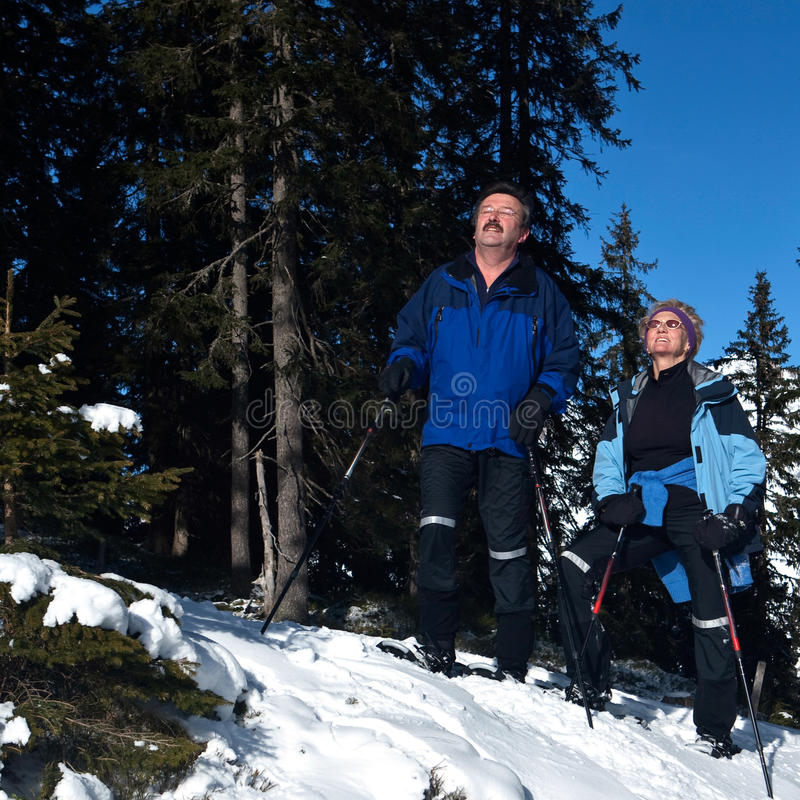 Active seniors in the Alps. Two acive seniors in an alpine setting enjoying the sun. They wear snowhoes and have ski poles stock image