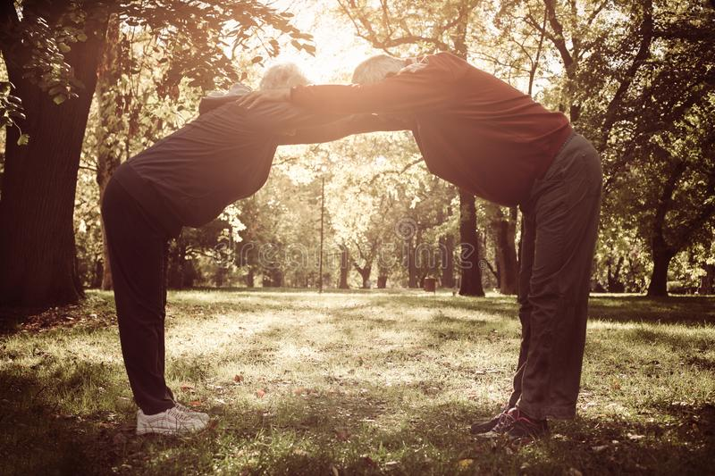 Seniors couple exercising and stretching arms together in. Active seniors couple exercising and stretching arms together in forest royalty free stock photos
