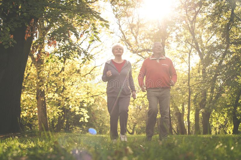Seniors couple in sports clothing jogging together in par stock photo