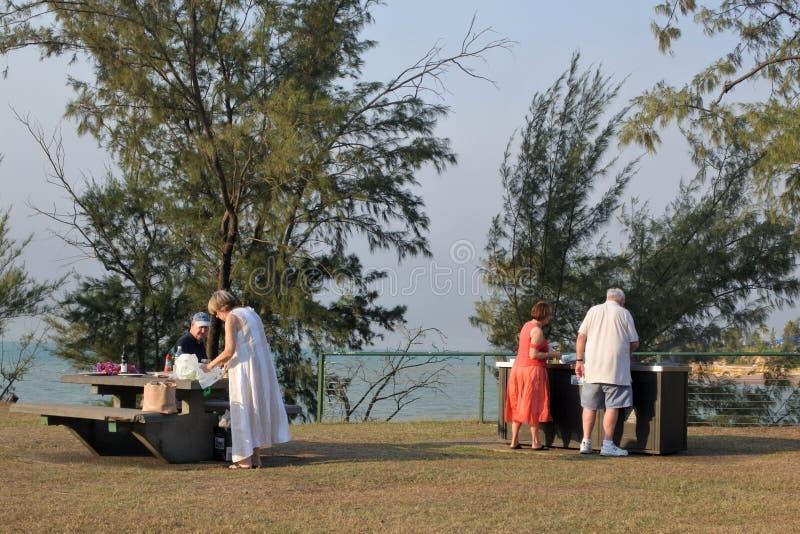 Active seniors having a BBQ outdoors royalty free stock photos