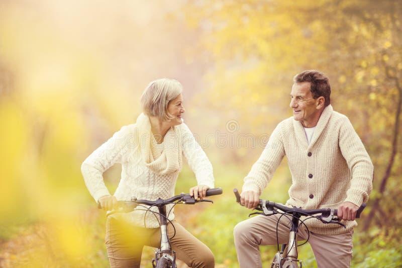 Active seniors riding bike royalty free stock photo