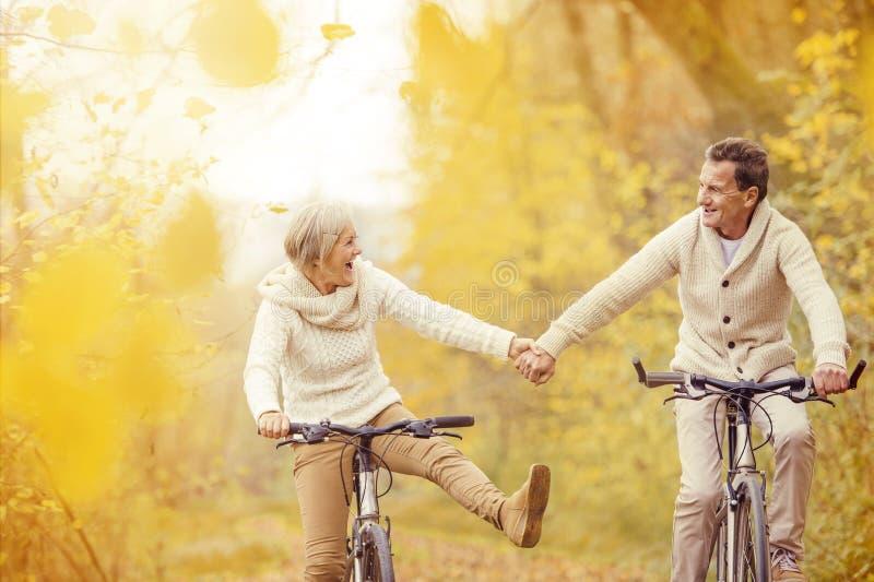 Active seniors riding bike stock photo