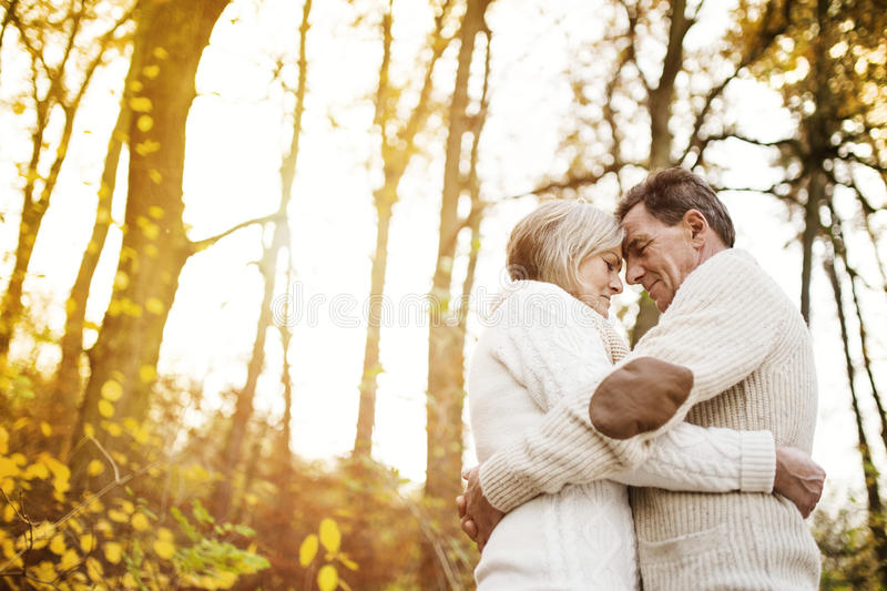 Active seniors taking walk in nature. Active seniors on a walk in a park hugging stock images