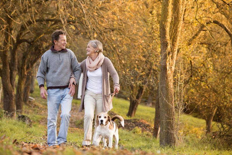 Active Seniors. Walking dog in nature