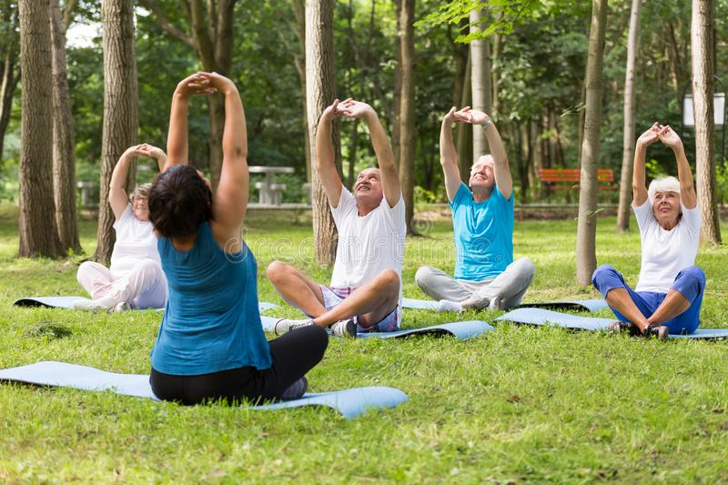 Active seniors working out in a park royalty free stock photo