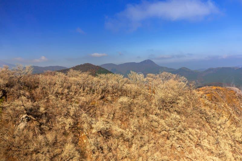 Active sulphur vents of Owakudani, Japan royalty free stock images