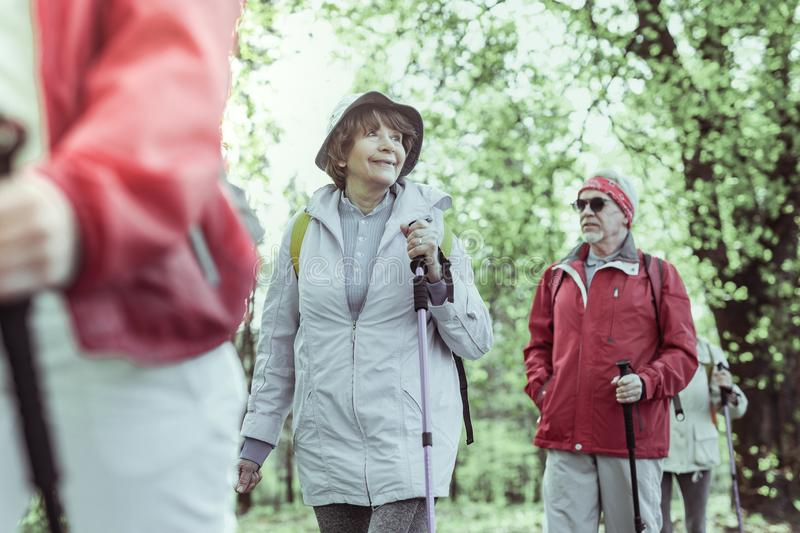 Elderly people hiking in the summer forest stock images