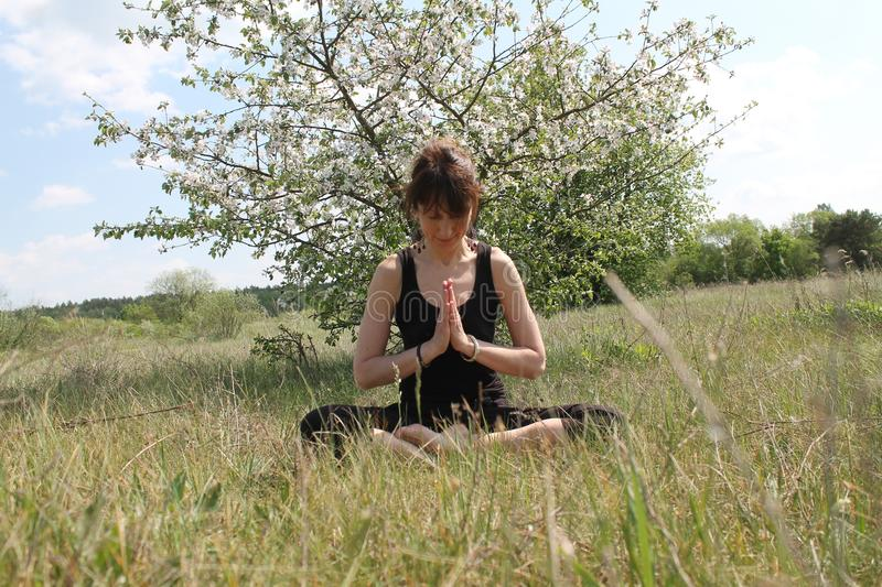 Active woman. Beautiful active flexible woman made yoga class on the nature stock image