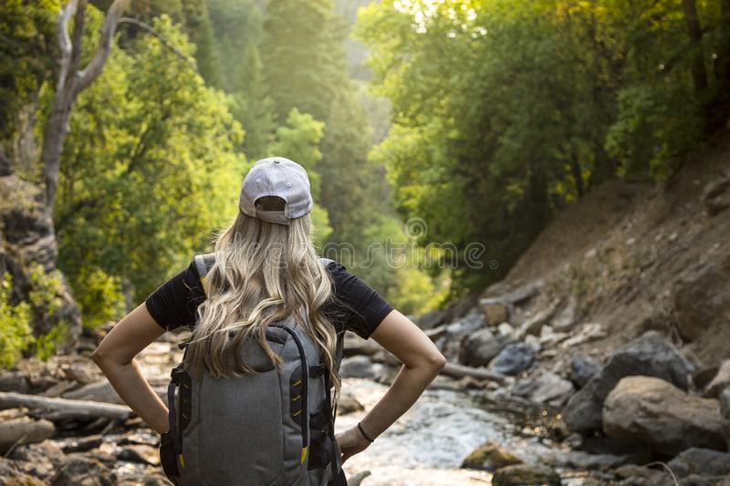 Active Woman hiking in a beautiful scenic mountain canyon. View from behind of a Woman hiking near a mountain stream while on vacation.Close up candid photo of stock photos