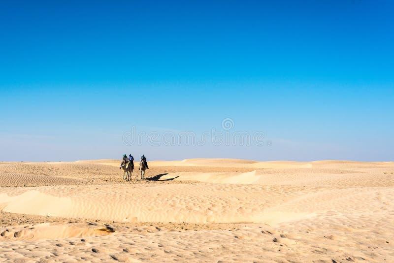 Actividades del desierto en Túnez foto de archivo libre de regalías
