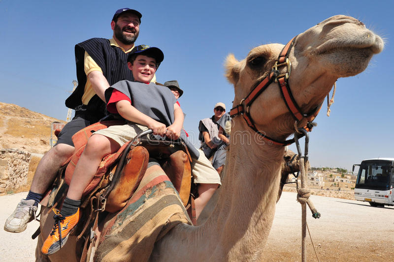 Actividades del paseo y del desierto del camello en el desierto Israel de Judean imagen de archivo libre de regalías