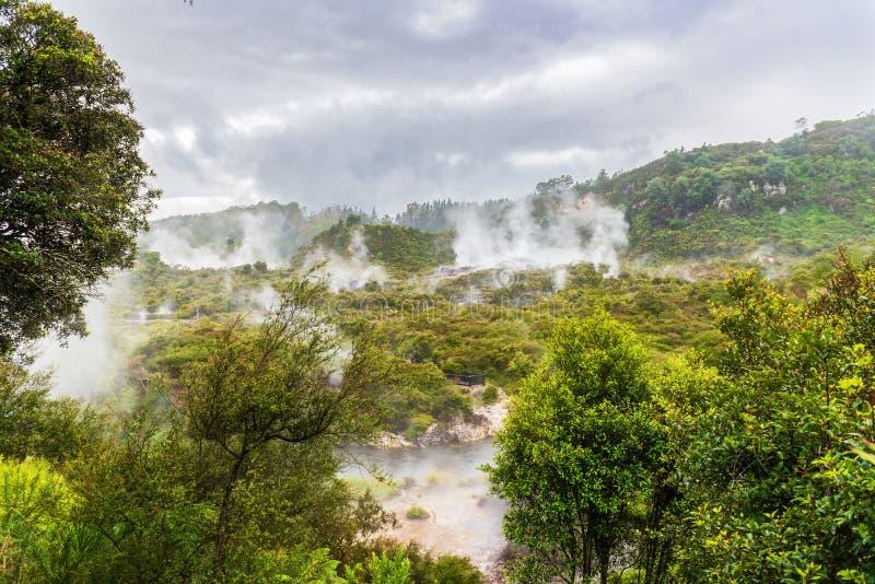 Activité géothermique spectaculaire dans Rotorua Nouvelle-Zélande photographie stock libre de droits