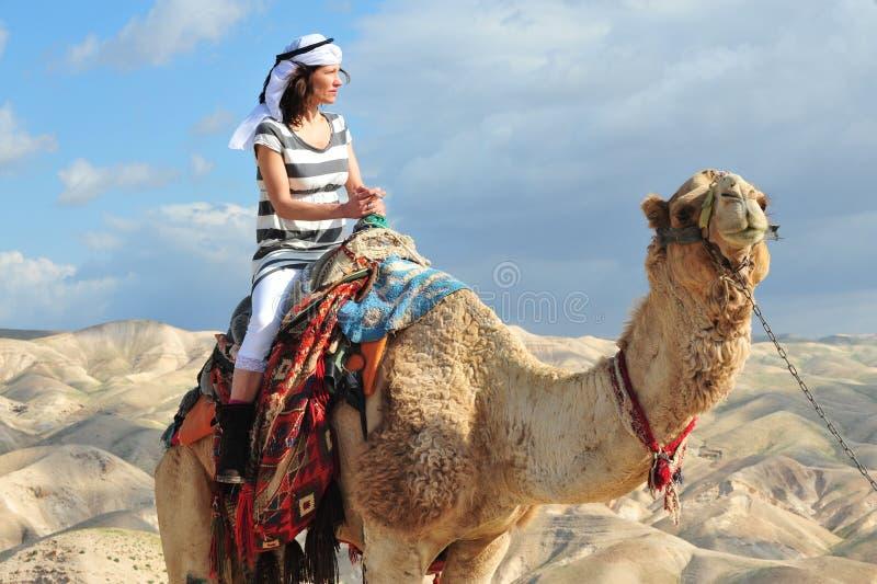 Activités de tour et de désert de chameau dans le désert Israël de Judean photographie stock libre de droits